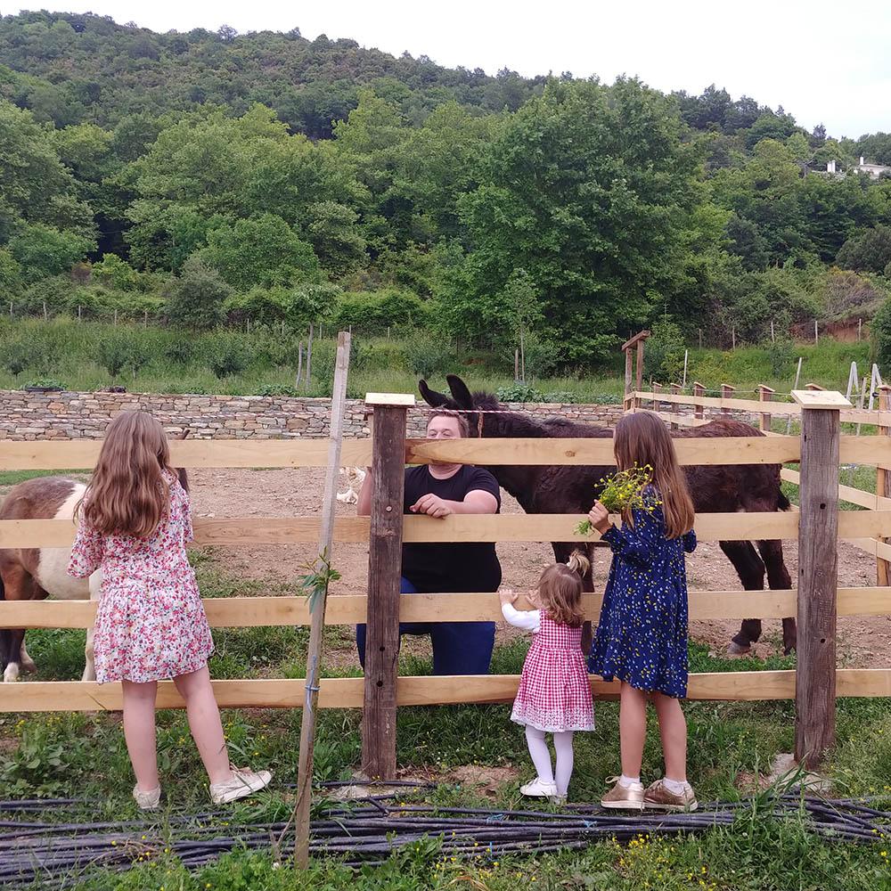 birthday with poney and donkeys karaiskos farm portaria pelion greece